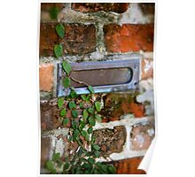 Wandering Ivy and The Mail Slot Poster