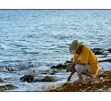 Local Shell Seeker by Missy Lamb