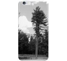 Farmington, PA: One's Left Standing iPhone Case/Skin