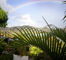 St. Barthelémy Rainbow by Missy Lamb