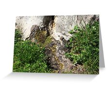 Roots Melt to Earth Greeting Card