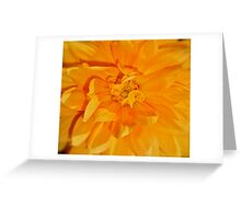 "They Call Me ""Mellow Yellow"" Greeting Card"