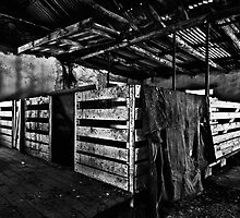 Old Sheep Pen b&w by Craig Hender