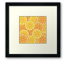 Various Citrus Slices 2 Framed Print