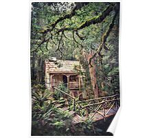 Woodland Mysteries Poster
