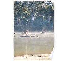 Misty Mornings On The Murray Poster