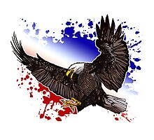 Bald Eagle - Red, White & Blue Photographic Print