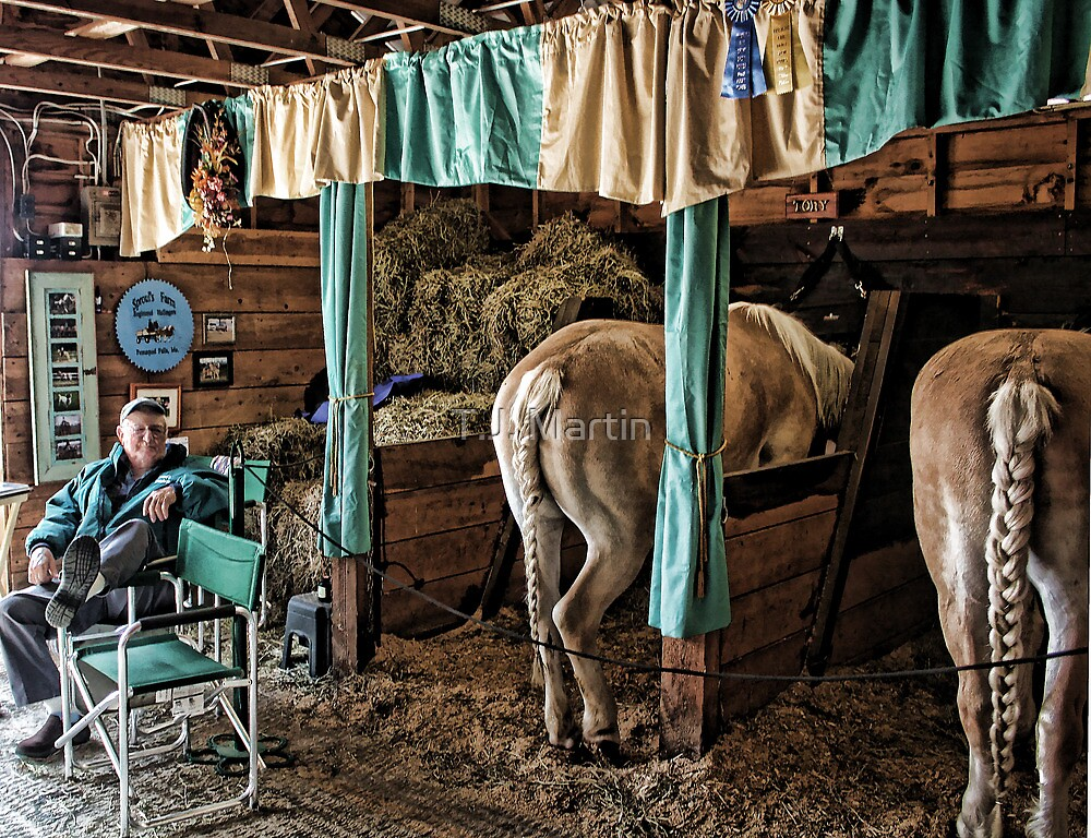 Prize Winning Draft Horses - Fryeburg Fair by T.J. Martin