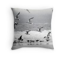 Scrambling Sea Birds Throw Pillow