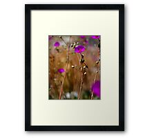 Purple Wild Flower Photo Framed Print