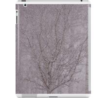 Snowy haiku iPad Case/Skin