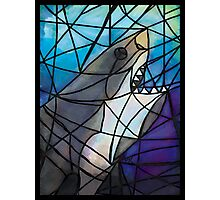 Stained Glass White Shark Photographic Print