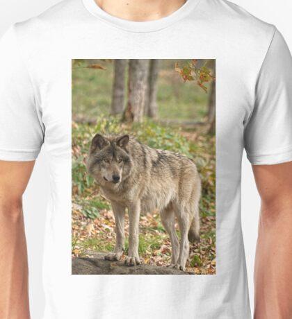 The Greeting Unisex T-Shirt