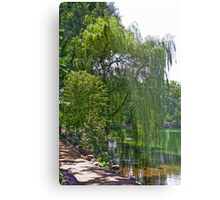 A Walk by the Willows Metal Print