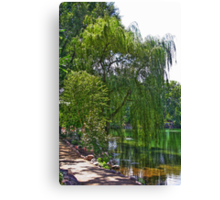 A Walk by the Willows Canvas Print