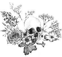 Still Life with Skull by eimiwho
