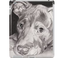 """Thai"" the Red-nose American Pitbull Terrier iPad Case/Skin"