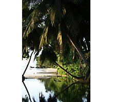 Seychelles Beach  Photographic Print