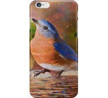 Sweet Little Bluebird iPhone Case/Skin