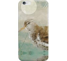 Beach Sandpiper II iPhone Case/Skin