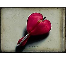 Heart full of soul Photographic Print