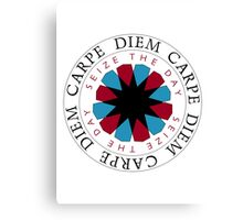 Carpe Diem Slogan Canvas Print