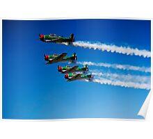Castrol Flying Lions Harvard Aerobatic Team Poster