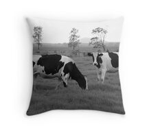 Black And Whites In Black And White! Throw Pillow