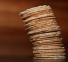 The Leaning Tower of Crackers by Stephen Mitchell
