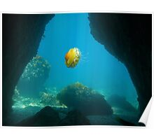 Exit of an underwater cave with a jellyfish Poster