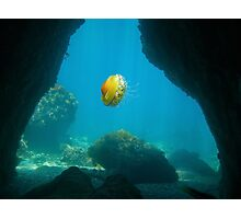 Exit of an underwater cave with a jellyfish Photographic Print