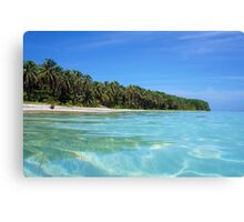 Caribbean island shore with turquoise water Canvas Print