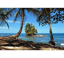 Coconut trees and a lush tropical islet Photographic Print