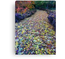 The Walkway to Wonderland Canvas Print