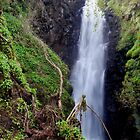 Cranny Falls by Stephen Maxwell