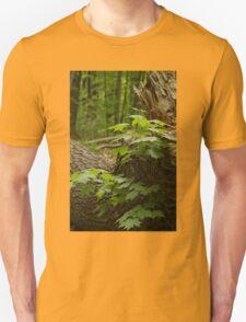 Along the path - Mud Lake, Ottawa, Ontario T-Shirt