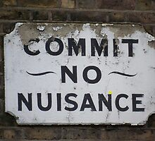 Commit no Nuisance by Danielle  La Valle