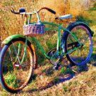 Grandpa's Old Bike by Sandra Moore