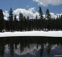 Reflections-Manzanita Lake April 24, 2010 by CBensemaJohnson