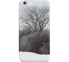 A Tree Among the Brush iPhone Case/Skin