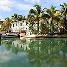 Jolly Harbor, Antigua by ZeeZeeshots