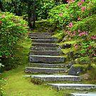Neverending Staircase by Rhonda  Thomassen