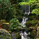Waterfall Wonder by Rhonda  Thomassen