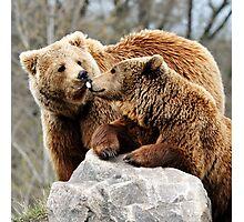 Happy bearthday Photographic Print