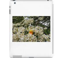 Chick on Blossom iPad Case/Skin