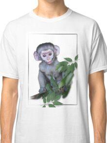 Vervet Monkey baby on white background Classic T-Shirt