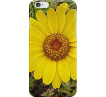 The Sunny Side Of Summer.....................Most Products iPhone Case/Skin