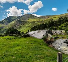 Nant Ffrancon Valley by Adrian Evans