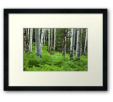 A Magic Place Framed Print