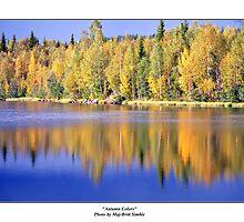 """Autumn Colors"" by Maj-Britt Simble"